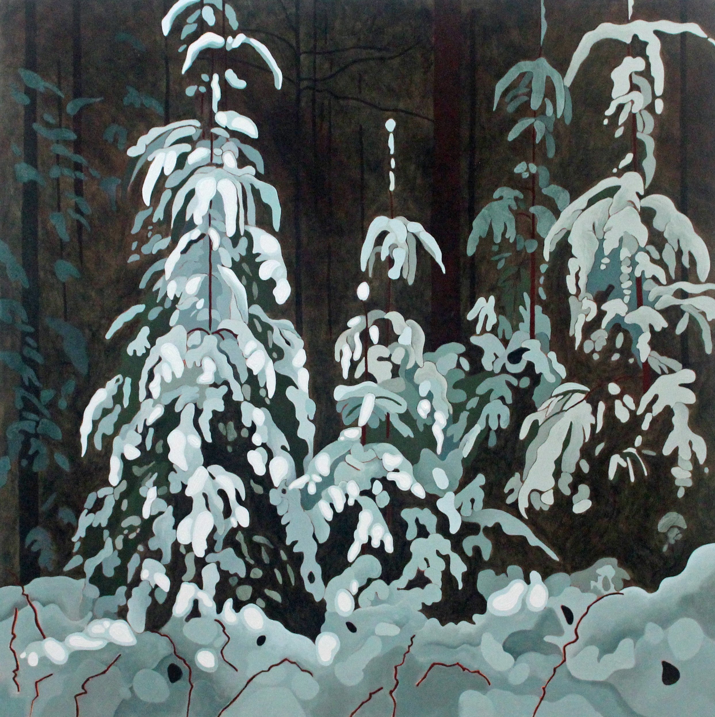 Snow Covered Spruce, 2020, 30 x 30, Acrylic on Canvas